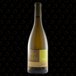 FAUGERES OLLIER TAILLEFER ALLEGRO BLANC