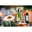 Vins Bertrand fêtent le printemps du Languedoc !